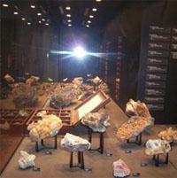 The Geology Museum, Museum Africa, Newtown, Johannesburg