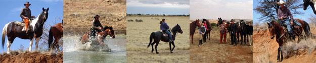 Western Style Horse Trails near Bloemfontein, South Africa