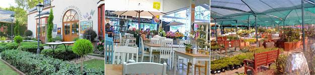 Broadacres Lifestyle Centre, Fourways, Sandton