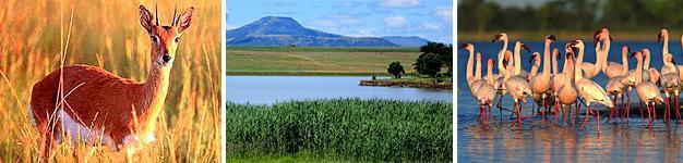 Chelmsford, Battlefields, KwaZulu-Natal