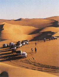 Faces of the Namib