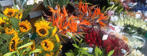 Flower Emporuim, Pick n Pay on Nicol