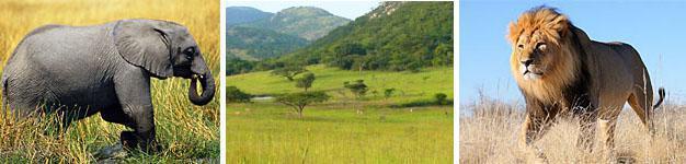 Magudu, Zululand,KwaZulu-Natal