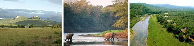 Mkuze, Elephant Coast, KwaZulu-Natal