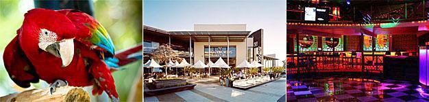 Montecasino Bird Garden, Design Quarter and Nightclub in Fourways