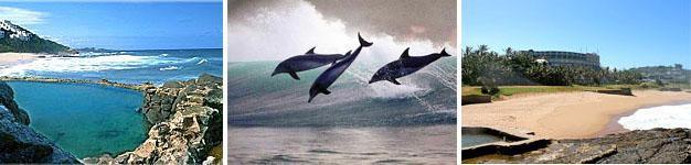 Salt Rock, Dolphin Coast, KwaZulu-Natal