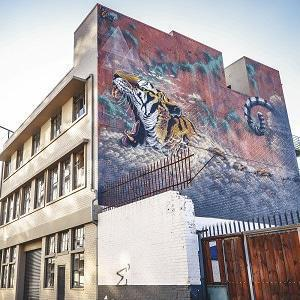Tiger on Wall Maboneng Johannesburg