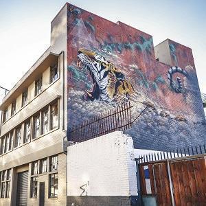 Tiger on Wall Maboneng Johannesburg