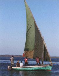 Dhows are still the staple mode of transport around thye bay and can be hired by tourists