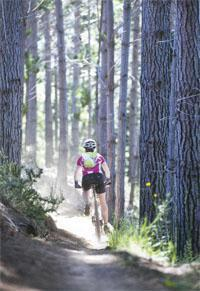 The smooth, fast tracks through the Grabouw forest offer welcome relief from the gut-busting climbs at the start of day two.