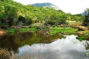 Thabaphaswa Mountain Sanctuary, Limpopo