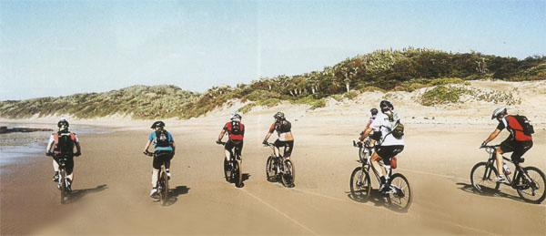 The wandering bovines of the Transkei are to thank for all the single track.