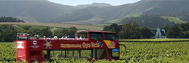 Wine Tour to Constantia Valley