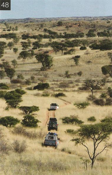 The Nossob 4x4 Eco-Trail is a four-day guided trail through the Kalahari dunes, parallel to the Nossob riverbed between Twee Rivieren and Nossob Camps.