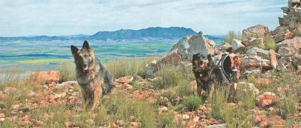 India and Stan enjoy a well-earned break high on the ridge of Ontongskop.