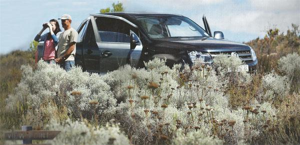 New Vistas The 4x4 trail in the Gamkaberg is a chance to see the Klein Karoo afresh