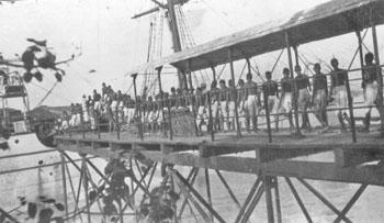 Indentured Indian labour for the sugar industry in Natal