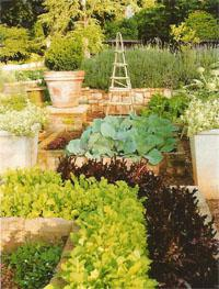 Obelisks supporting vegetables like tomatoes and beans add height.