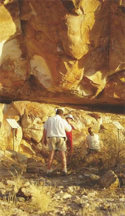 There is much more to Mapungubwe than spotting animals