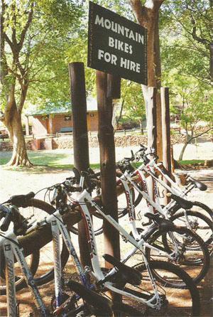 Mountain bikes for hire