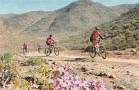 The Akkedis Pass en route to Hakkiesdooring Camp in the Richtersveld tested even the tough riders, but those who took time to slow down were spoilt by the flowers in bloom.