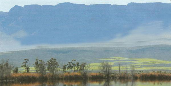 The Theronsberg reflects in a farm dam