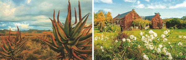The eastern Karoo around Somerset East is a land of aloes, which come into their own during winter. There is little to beat the beauty of a historic Eastern Cape Karoo farm like Glen Avon.