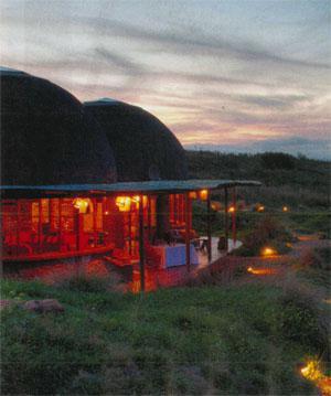 Gondwana Game Reserve Mossel Bay