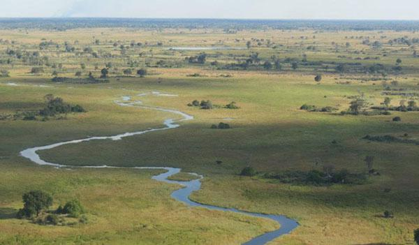 One of the many waterways in the Okavango Delta  a wildlife paradise