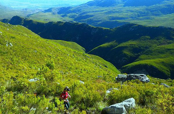 A rendezvous with nature - Grootvadersbosch Trail Challenge
