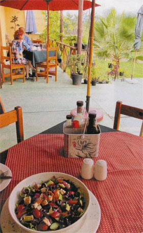 A freshly picked garden salad on the stoep at Algerynskraal Coffee Shop is a great way to break a journey.