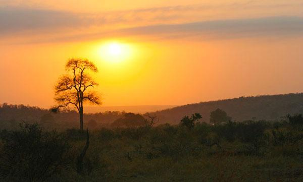 A special Kruger sunrise A special Kruger sunrise