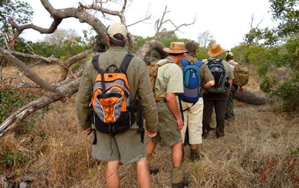 Bush walking in Kruger