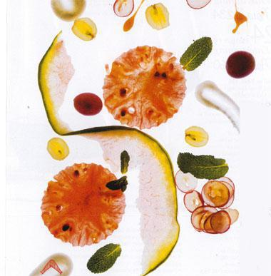 Watermelon grape and honey yogurt salad