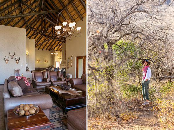 Thaba Lodge seamlessly merges inner comfort with bush proximity.