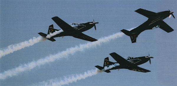 The South African Air Force's Silver Falcons take to the skies in their Pilatus PC-7 Mk II basic trainer aircraft.