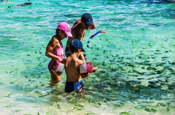 Snorkelling and swimming is a popular activity in the Andaman Sea. Along the shore of Koh Khai island colourful fish come in masses, while tourists lure them closer with pieces of bread.