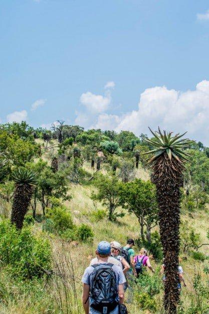 hennops-hiking-trail8