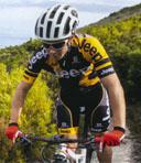 Here be Heffalumps - best cycle rides in the Garden Route