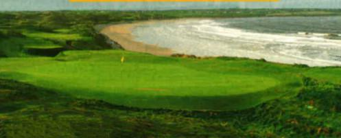 Complat Golfer