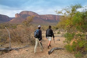 Led by armed rangers, guided walks allows  guests to to get that much closer to nature.