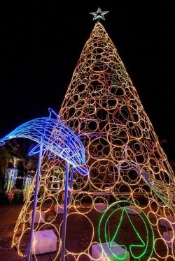CAPTION: Port Elizabeth's beachfront will be lit up by a giant Christmas tree 13 metres tall when it is officially unveiled in the Bayworld parking area tomorrow. Picture: Supplied