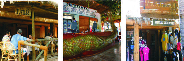 Cango Wildlife Shops