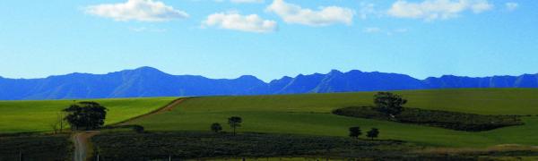 A Karoo View