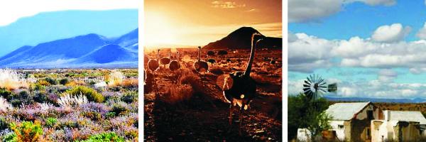 Farewell Karoo