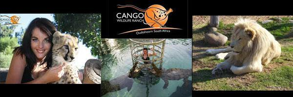 cango wildlife ranch 2014v1