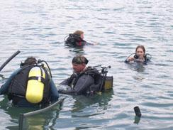 A group of divers getting ready to dive