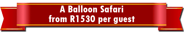 """Balloon Flight Special Offer   Bill Harrop's """"Original"""" Balloon Safaris"""
