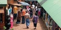 Welwitschia Market Hartbeespoort