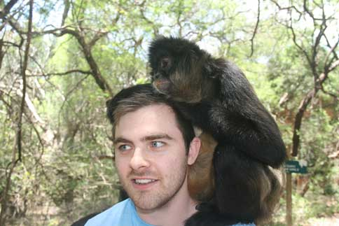 Monkey Interaction Bush Babies Sanctuary Harties